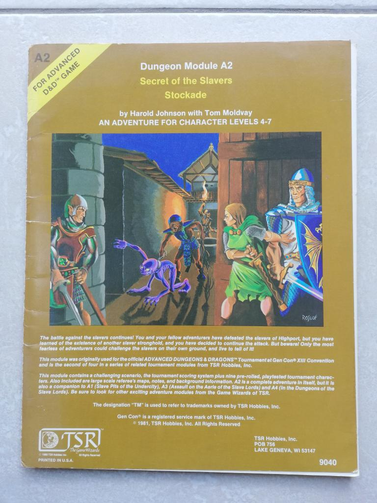 Advanced Dungeons & Dragons - 1st Edition - 1981 - Tsr
