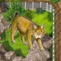 Image de Zooloretto: Iberian Lynx (promo)