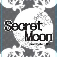 Image de Secret moon