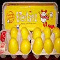 Image de La danse des œufs