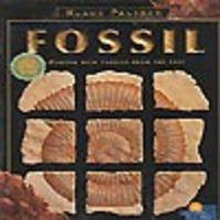 Image de Fossil