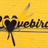 Image de Lovebirds