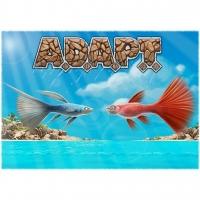 Image de A.D.A.P.T.