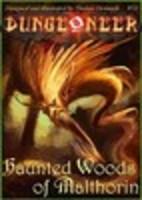 Image de Dungeoneer : Haunted Woods of Malthorin