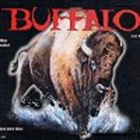 Image de Buffalo