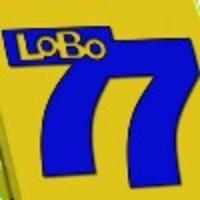 Image de Lobo 77 - Boîte métal